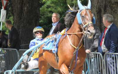 Harddraverij