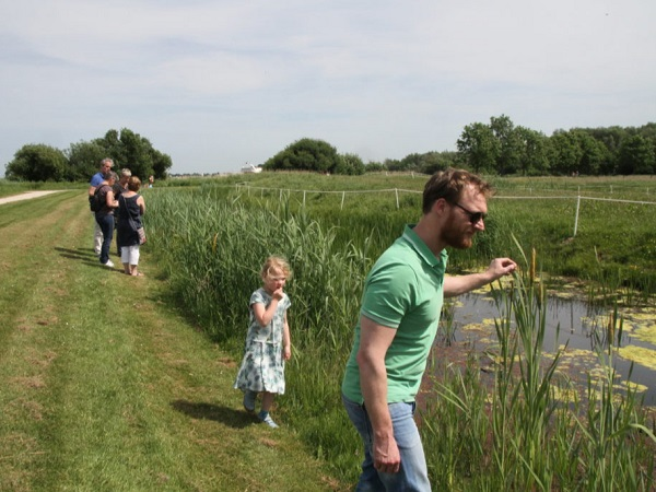Natuur Ontdekking Centrum Koudenhoorn in juni